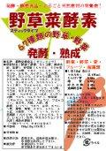 野草菜酵素 10g×25包 無添加 発売記念価格